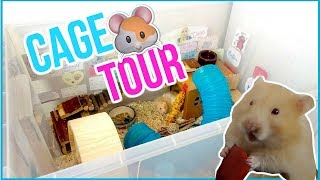 🔥CAGE TOUR 🔥| Muffin 🐹