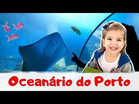 QUE LUGAR INCRÍVEL! Sea Life, Matosinhos- Porto. #608