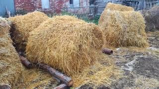 хозяйство часть 2, заготовка соломы на зиму