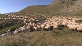Documentaire Ministère de l'environnement | NEA Agence Interactive