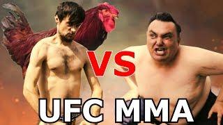 Omčo i Meca - UFC MMA borba u kokošinjcu