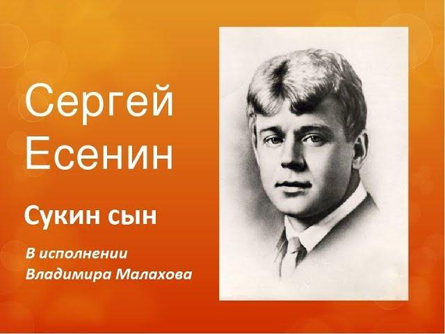 Сергей Есенин. Песня на стих Сукин сын в исполнении  Владимира Малахова