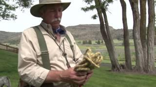 Dog Training & Bird Hunting Tip: Gear - Wingshootingusa.org
