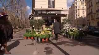 FloraHolland I Where beauty meets business