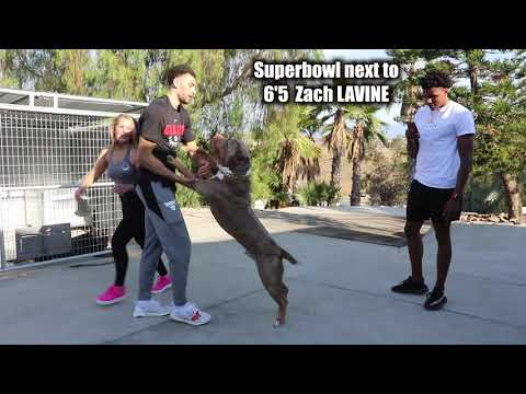 Zach LaVine and Trent Williams visit Bossy Kennels EPISODE 1