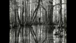 The Slender Man - Pictures, recordings and videos