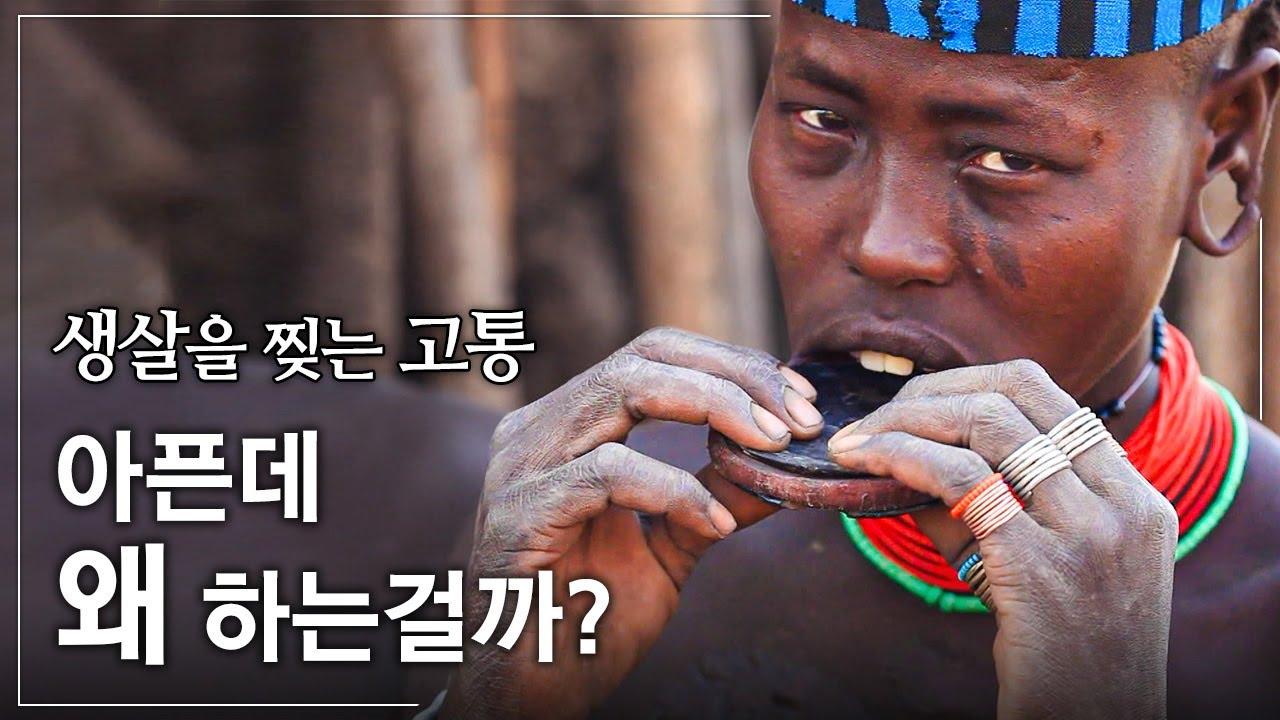 무르시족 여인들이 고통을 참고 입술 접시를 하는 이유ㅣ문명이 비껴간 에티오피아 접시 부족의 여인들ㅣ인류 원형 탐험