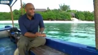 Hotel sous l`eau dans l`ile Pemba Zanzibar