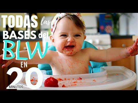 🥦👶🏻TODAS las BASES del BLW en 20 min || Baby Suite by Pau