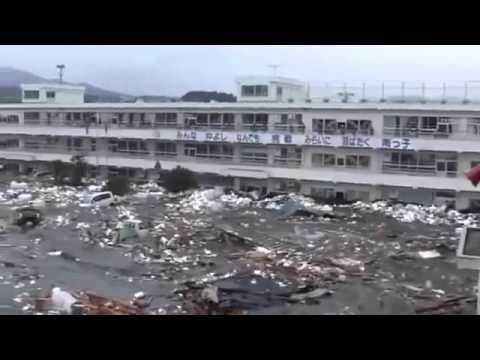 adn-dna.net 0355 Tsunami en  Japón 2011