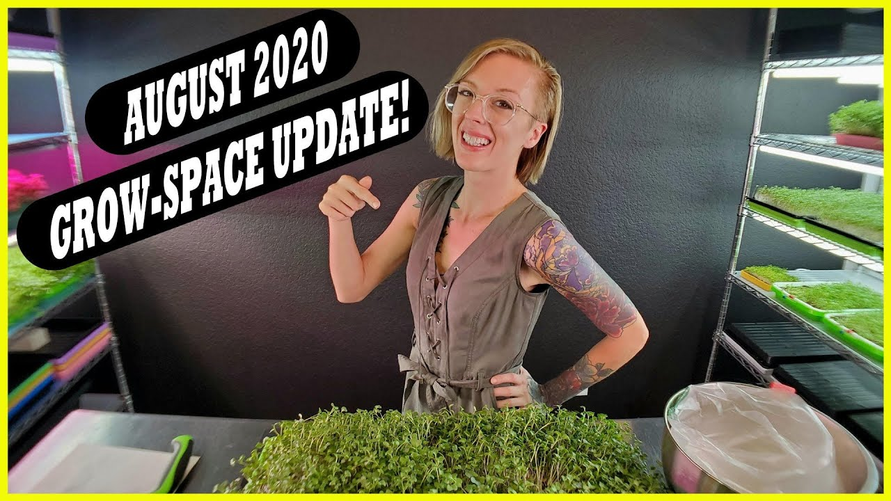 On The Grow - August 2020 Update