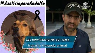 """Procesan a joven que mató a perrito """"Rodolfo"""