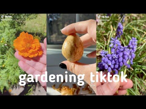 plants on tiktok | gardening/farming compilation