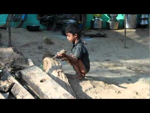 How to make a cricket bat out of a coconut palm leaf | Tamil Nadu village boy, India | Kids homemade