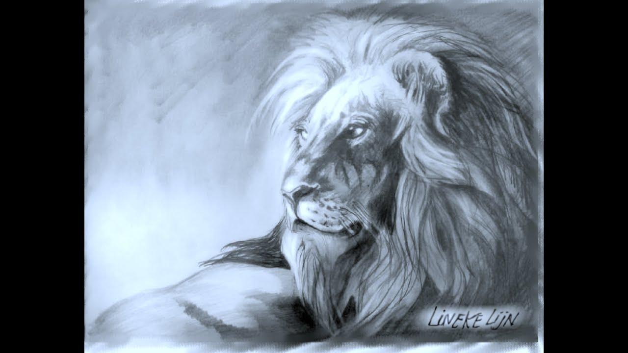 Hoe Teken Je Een Leeuw Realistisch Met Grafiet Potlood