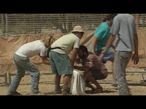 BEAUTIFUL ISRAEL / HOLY LAND Top Tourist Destinations, Stock Footage