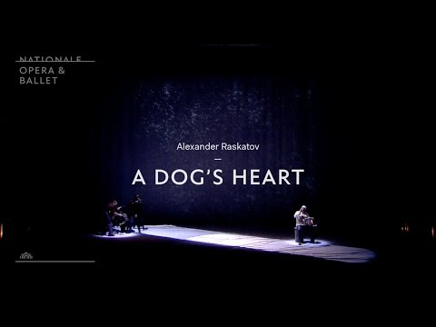 A Dog's Heart  What's it all about?  Complicite