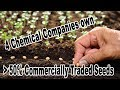 4 Chemical Companies Control More Than 50% Of Commercially Traded Seeds worldwide by Mark Schapiro