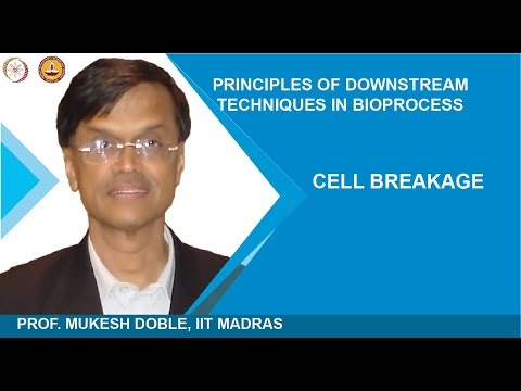 Cell Breakage