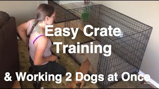 How To Crate Train A Puppy - Training 2 Dogs At Once