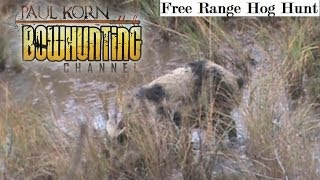 Bowhunting Free Range Hogs in MS by boat Public Land PIG hunt shot placement awesome HD