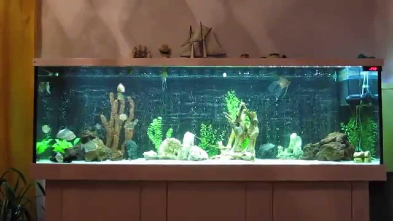 Чем сделать аквариум своими руками фото 473