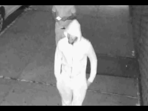 NYPD Wanted: Grand Larceny Pattern (Brooklyn)
