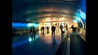 DTW Tunnel Thumbnail