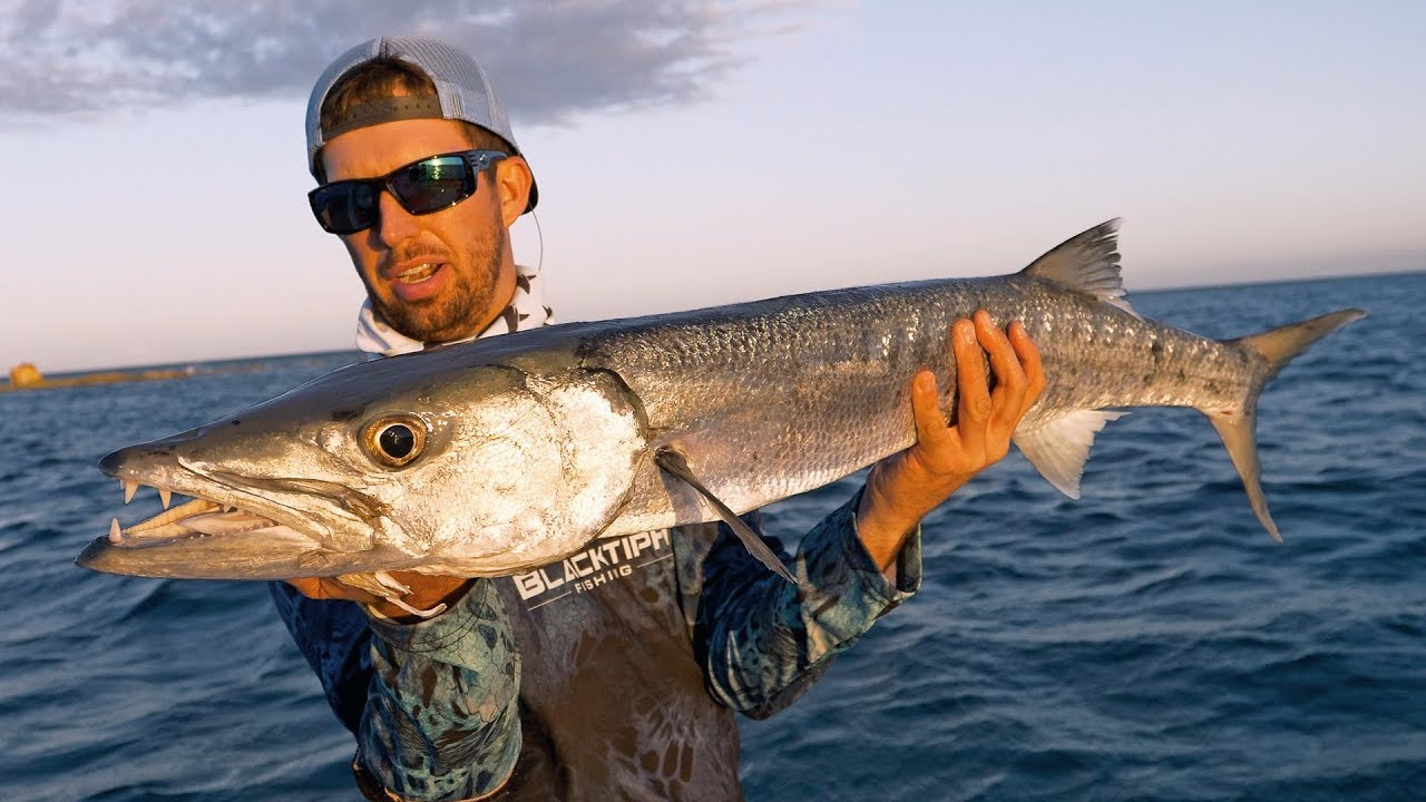 Fishing for barracuda and giant houndfish in the bahamas for Fishing nassau bahamas