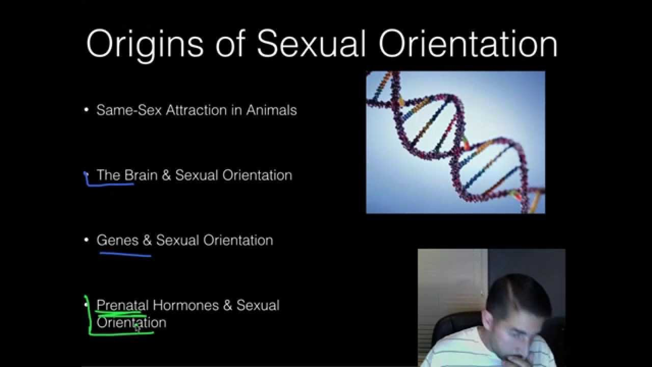 Bisexual sex and threesomes