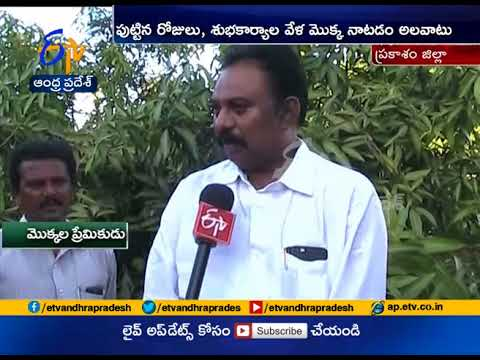 House Transformed into A Garden | at Prakasam District | A story