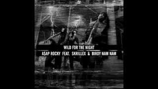 Wild For The Night   A$AP Rocky feat  Skrillex and Birdy Nam Nam   YouTube