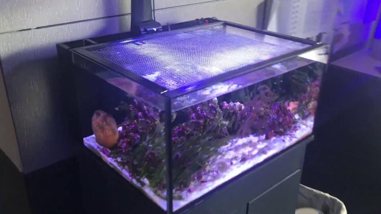 D-D Aquarium Fish Jump Guard Cover