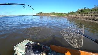 РАДИ ТАКИХ ПОКЛЕВОК СТОИЛО СЮДА ЕХАТЬ Ловлю рыбу на большой реке