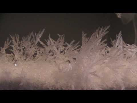 Ice Crystals in Our Freezer