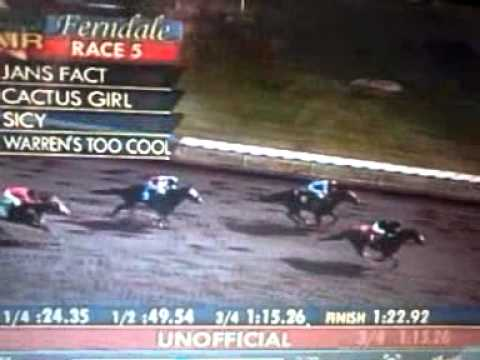 ferndale horse racing;;LONGEST SHOT ON THE BOARD FROM LAST TO FIRST !!!!!!!!!!!!!