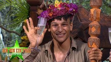 Dschungelcamp 2020   Prince Damien ist der Dschungelkönig 2020