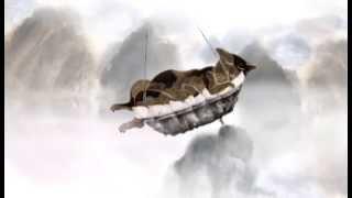как мыши кота хоронили  (2011)