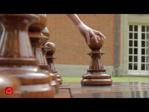 Гигантские шахматы и шашки