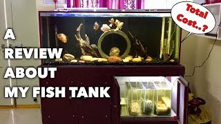 A Review About My Fish Tank Full setup | Tamil |