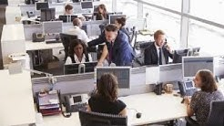 The top five best companies to work for