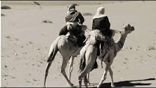 هجيني نار 2019 || عوده ابو قرينات   يا يمه ماريد انا الهجان