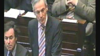 Dail Eireann Debate Part 1 (Voice Over)
