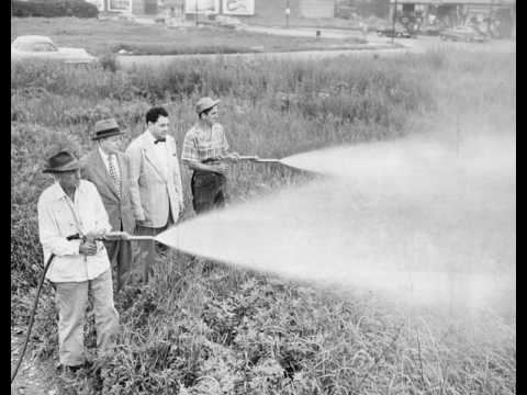 Story About Pesticides 3LO radio Australia 1964