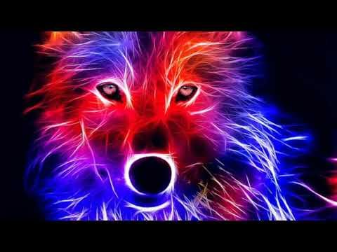 Best  iPhone ringtone remix Martin Garrix Animals (Remix) Ringtone Rocking Ringtone 2018