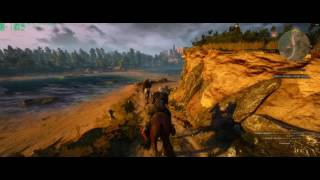 Witcher3 with intel xeon e5 2603v3