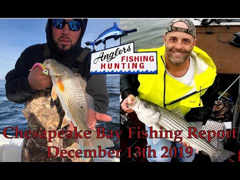 Chesapeake Bay Fishing Report: December 13th 2019