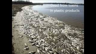 North Western Pacific Garbage Patch PSA Spring 2012