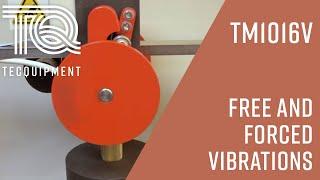 Forced Vibrations TM1016 - TecQuipment