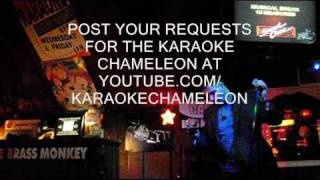 The Karaoke Chameleon - I Drink Alone